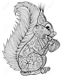 hand drawn funny squirrel with nut for anti stress coloring