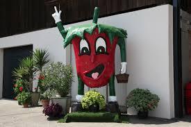 chambre d agriculture bas rhin a propos paradis des fraises