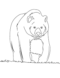 brown bear walking coloring pages place color