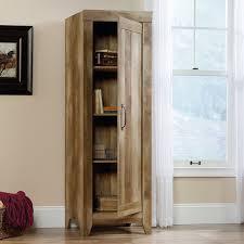 Door Storage Cabinet Andover Mills Orville 1 Door Storage Cabinet Reviews Wayfair