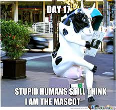 Funny Cow Memes - cow with swag by matija123 meme center