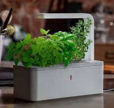 click u0026 grow smart herb garden lights up the indoor garden cnet