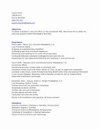 word document report templates daily activity report template best sles templates