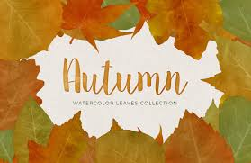 watercolor autumn leaves collection u2014 medialoot