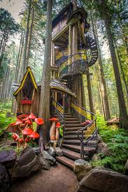 bc s tallest highest treehouse is at the enchanted forest