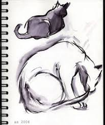 siamese cat drawing blog about cats