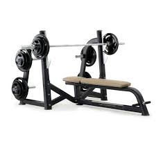 pulse fitness origin olympic horizontal bench press with disc