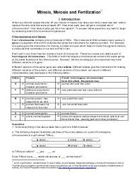 mitosis meiosis and fertilization packet answers 28 images