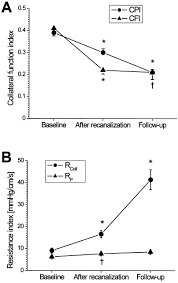 regression of collateral function after recanalization of chronic