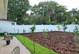 landscape design winter park florida earthwise edible landscape