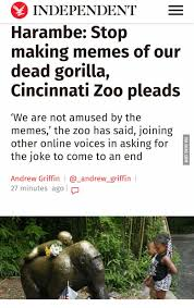 Making Memes Online - 25 best memes about stop making memes of our dead gorilla