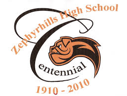 zephyrhills home depot black friday zephyrhills florida 100th anniversary