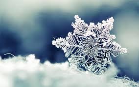 snowflake wallpaper hd hd wallpaper