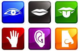 significado de imagenes sensoriales wikipedia qué son las imágenes sensoriales respuestas tips
