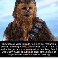 Chewbacca Memes - chewbacca s voice is made from a mix of real animal sounds