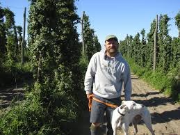 low trellis organic hops production brian tennis mi youtube