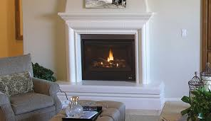 Superior Fireplace Glass Doors by Gas Fireplaces Fireplaces Superior Fireplaces