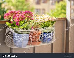 image balcony flower box filled plantpots stock photo 109081193