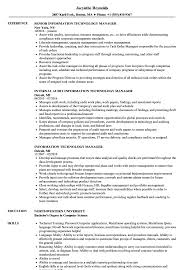 resume information technology manager information technology manager resume sles velvet jobs
