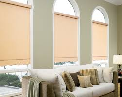 Roll Up Blinds For Windows Best Roller Window Shades Decorative