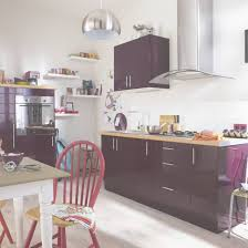 cuisines leroy merlin delinia meuble de cuisine violet delinia leroy merlin for meuble