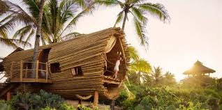 Treehouse Living Treehouse Rooms Yoga Retreat Resort Eco Luxury Boutique Hotel