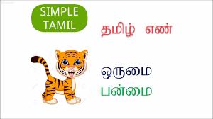 learn tamil singular plural எண ஒர ம பன ம