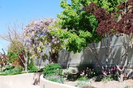 Botanical Gardens Grand Junction 12 Amazing Gardens To Visit In Colorado This