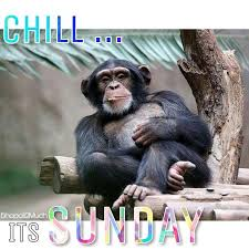 Its Sunday Meme - chill its sunday today sunday weekend relax chill meme