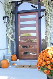 front door with glass panels neat trends eterior doors design ideas along with modern front