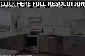 Painting Laminate Kitchen Cabinets White Painted Grey Kitchen Cabinets Home Decoration Ideas