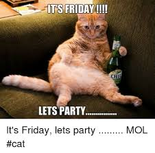 Friday Cat Meme - its friday lets party it s friday lets party mol cat friday meme
