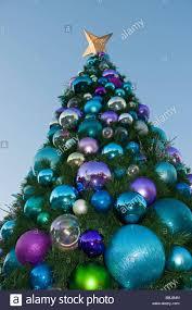 outdoor christmas tree outdoor christmas tree high springs florida stock photo