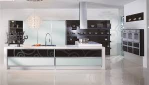 Affordable Modern Kitchen Cabinets Com And Cheap  NRD Homes - Affordable modern kitchen cabinets