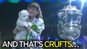 who won the dog show on thanksgiving crufts 2017 first day winners results and full schedule as