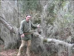 Underground Duck Blind Natural Hunting Blinds Youtube