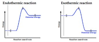 exothermic or endothermic reactions chemistry stack exchange