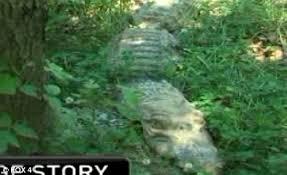 us shoot alligator dangerous looking animal is a lawn