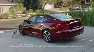 nissan altima for sale in arkansas 2016 nissan maxima searcy ar call aaron 501 230 4515 orr
