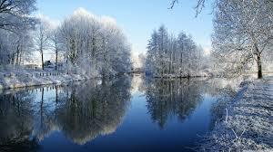 frozen trees reflected in water hd desktop wallpaper widescreen