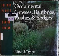ornamental grasses bamboos rushes and sedges foliage plants in
