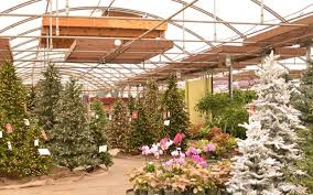 lifelike trees a fit for all mcdonald garden center