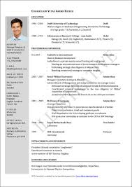 How Should A Resume Look What Should A Cv Look Like Template