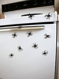 easy to make magnetic spiders hgtv