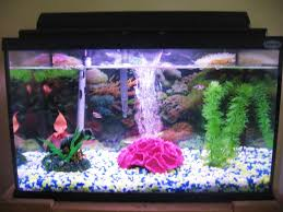 goldfish tank decorations awesome house tropical fish tank