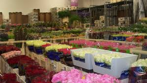 Wholesale Fresh Flowers Home N S Flowers Birmingham Wholesalers Of Fresh Flowers