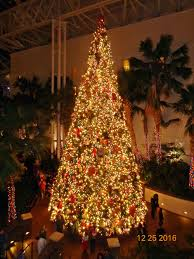 christmas at the opryland hotel in nashville tn pictures u0026 videos