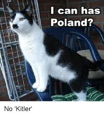 Cat Suit Meme - i can has poland no kitler 8078384 png
