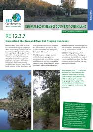 native plants south east queensland regional ecosystem 12 3 7 by healthy land and water issuu