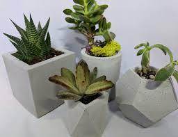 Concrete Planter Decorative Planter For Succulents And Indoor Plants Concrete